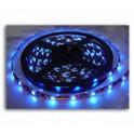 Taśma LED 3528 IP65 niebieska 5mb